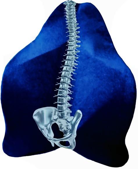 Rückenfreund Polster dunkelblau