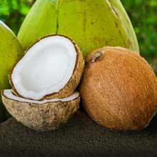 Kokos-Produkte